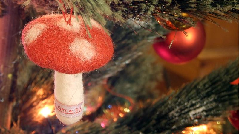 foto fungo albero di natale
