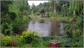 Babij Garden Budziarze - Mój ogród półdziki