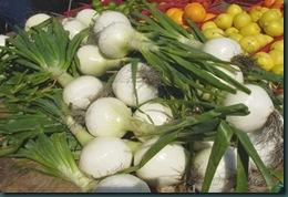 Sweet_onions_1