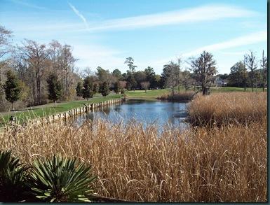 myrtle golf09085