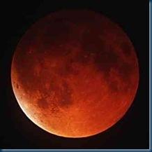 Moon-Blood5