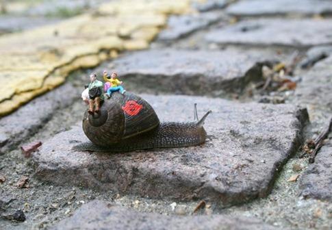 snail bus 1 - blog