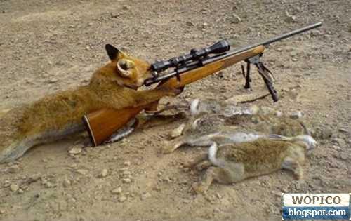 Smart Hunter