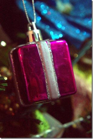 Close up Christmas 056.ARW