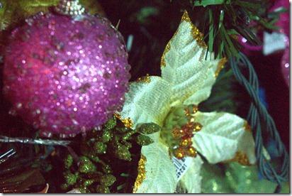 Close up Christmas 066.ARW