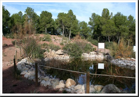 Inauguración Parque Ecológico 13