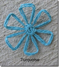 turquoisedaisy