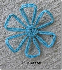 turquoisedaisy