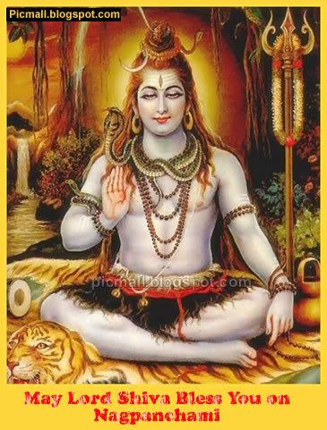 Nagpanchami  Image - 7