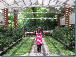 Orchid Garden (26)