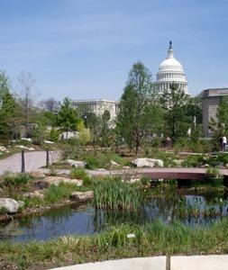 Botanical Gardens 19