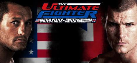 Ден Хендерсон (Dan Henderson) vs Майкл Биспинг (Michael Bisping)