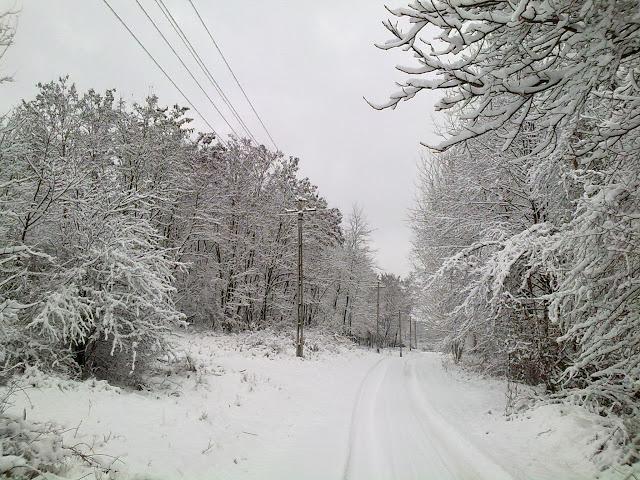 Iarna in satul meu I