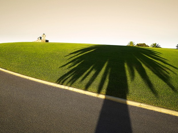 Palm-shadow-on-green-field