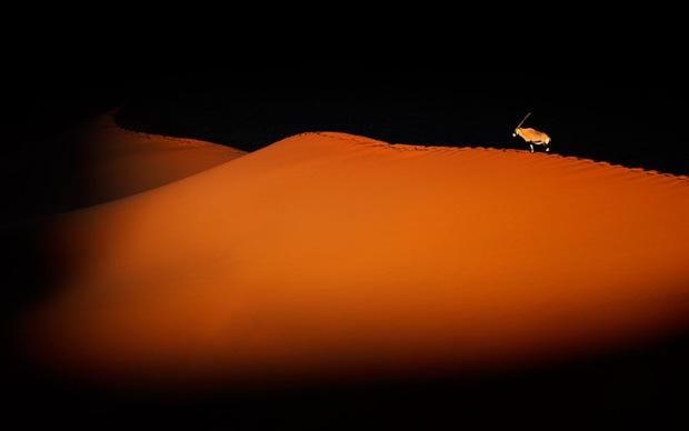 Sands at the Sossusvlei Desert , Namib-Naukluft National Park, Namibia