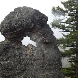 Key to my Heart! by Sylvia Kunz - Nature Up Close Rock & Stone