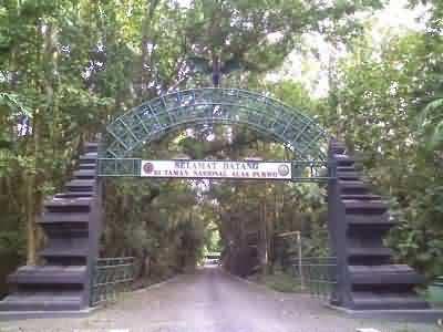 alas purwo gate