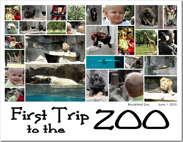 First Trip to the Zoo - June 1, 2010