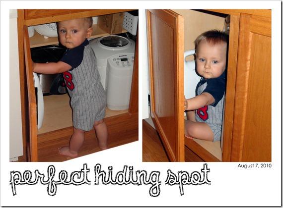 Perfect Hiding Spot - August 7, 2010