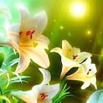 White_Lilies.jpg