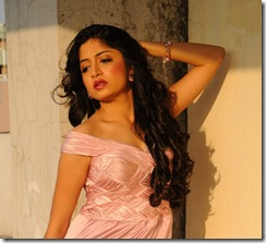 actress-poonam-kaur-hot-wallpapers