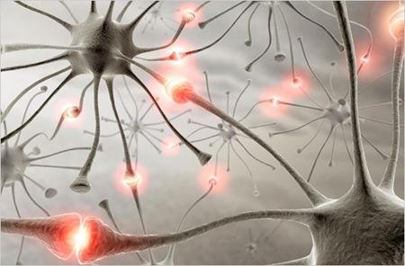 brainneurons