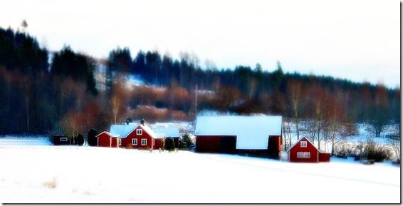 röda hus 1400x700