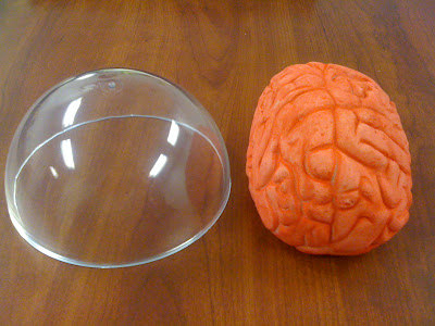 Clear Plastic Hemisphere and Pink Prop Brain Decoration