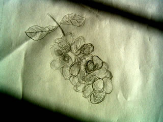 Sketch of a bunch of grapes