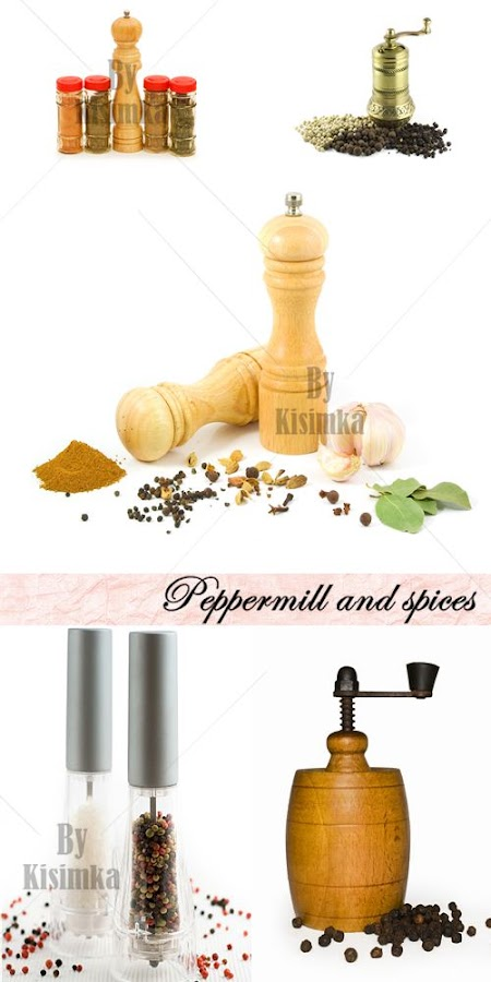 Stock Photo: Peppermill and spices
