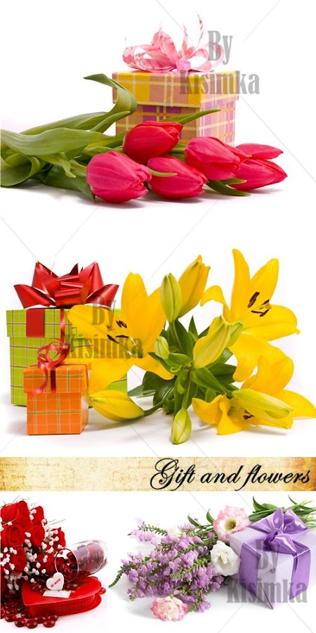 Stock Photo: Gift and flowers