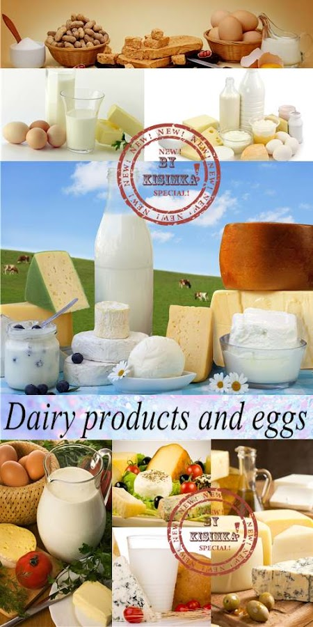 Stock Photo: Dairy products and eggs