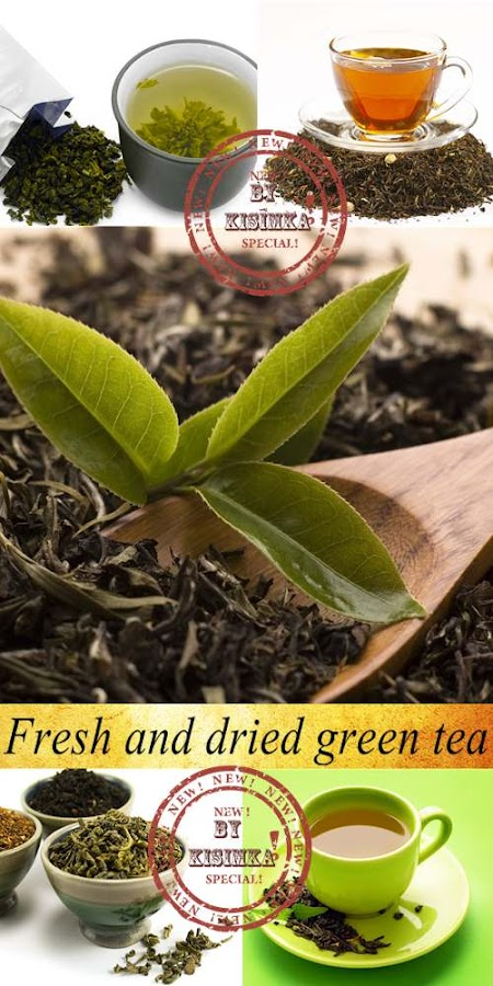 Stock Photo: Fresh and dried green tea