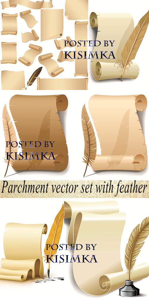 Stock: Parchment vector set with feather
