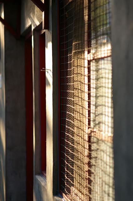 [DA70mm]四四南村試拍
