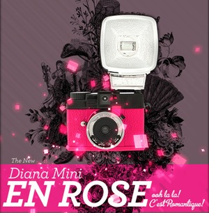 diana-mini-en-rose
