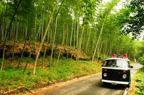 Kioto y Nara 035