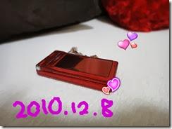 DSC00006v