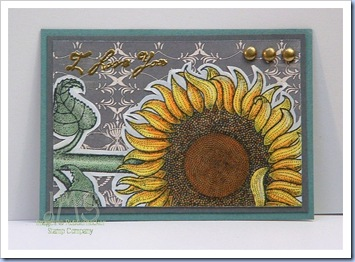 Sunflower ATC-JMS