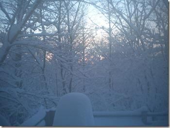 Feb2010 Snow14