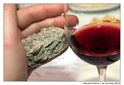 vinorum_terroir