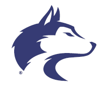 washington huskies logo pantone