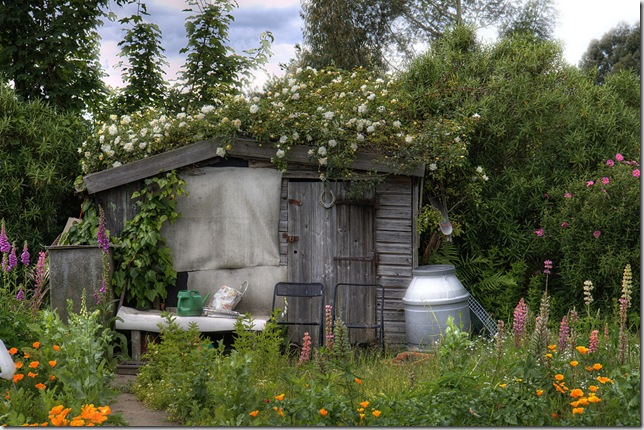 garden_shed_flickr_9