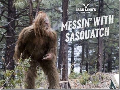 sasquatch nftech