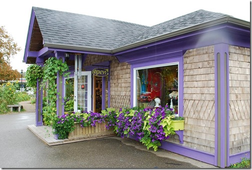shop purple trim mahone bay