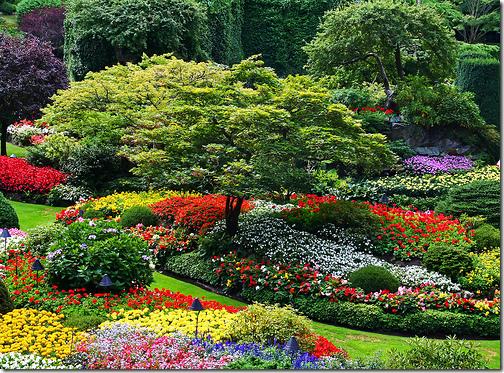 butchart garden flickr