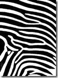 zebra_print_comforterLarge