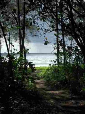 Tai Muang Beach  صور لشاطئ بوكيت