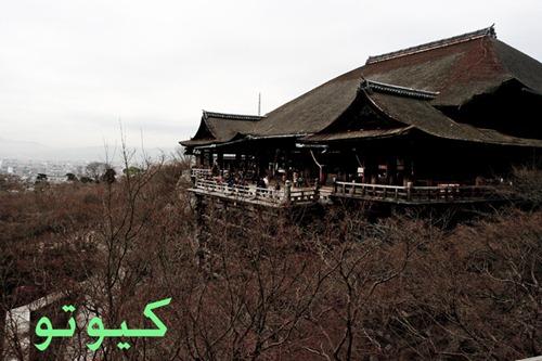 كيوتو
