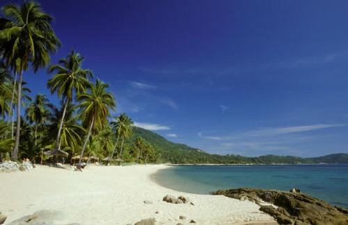 Koh_Samui-Beach_in_Koh_Samui-Main